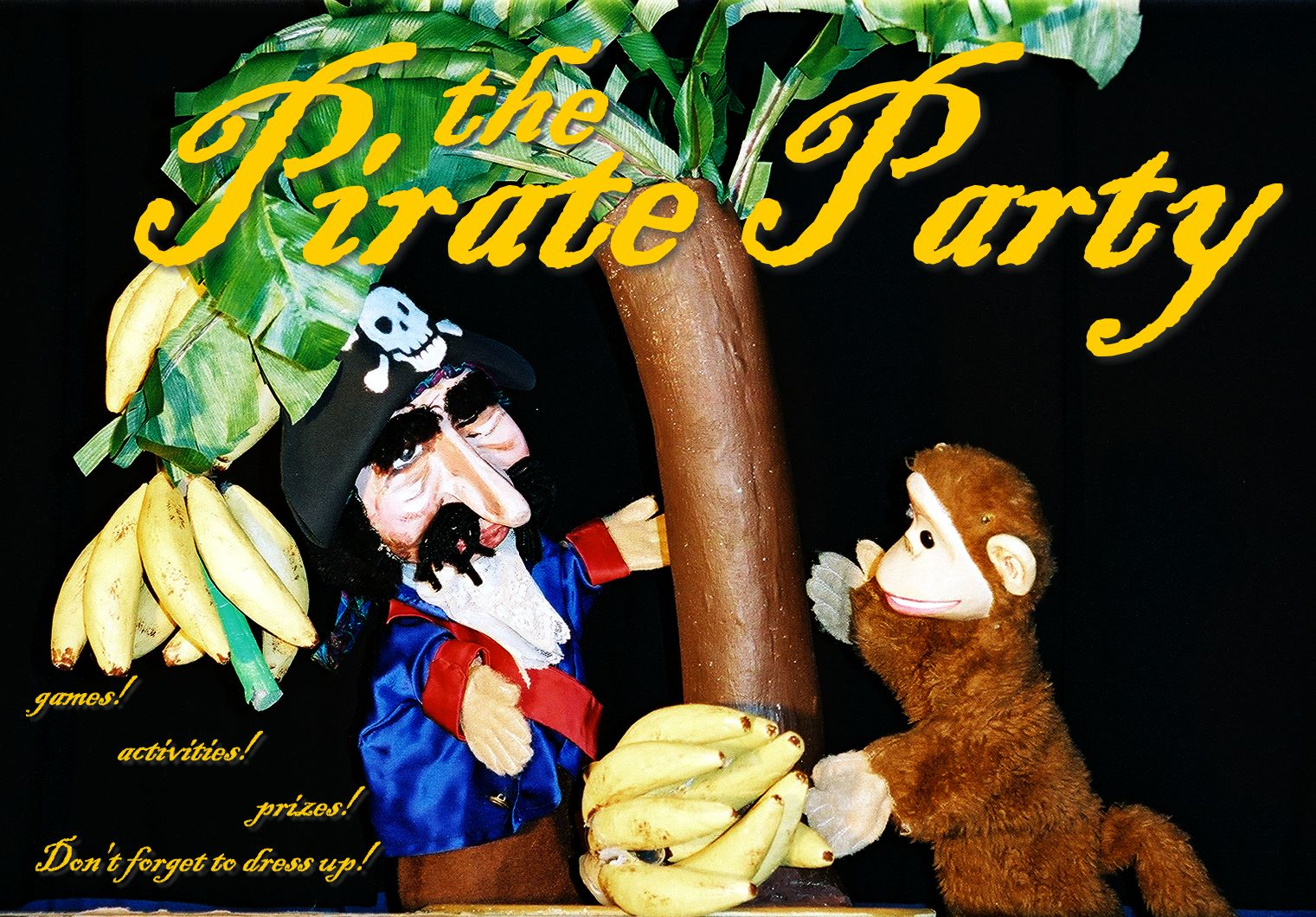 The Pirate Party!